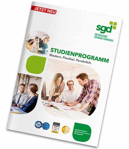 SGD Studienhandbuch 2018