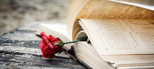 Mit der Romanwerkstatt für Frauen- und Liebesromane eigene Projekte verwirklichen